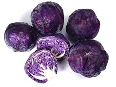 Mini Red Cabbage
