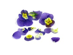 Edible flowers White/ Yellow/ Pink/ Blue pansies